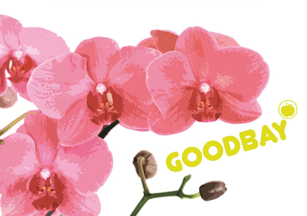 GoodBay